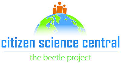 Citizen Science Central The Beetle Project