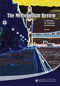 cover of Metropolitan Review Fall 2013 digital art photo of sunset over Venice